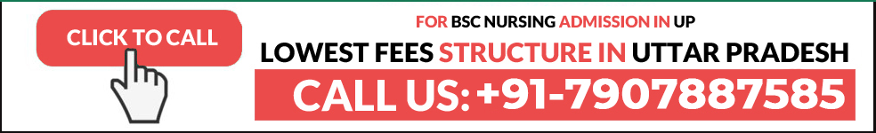 BSc Nursing Admission Uttar Pradesh Fees
